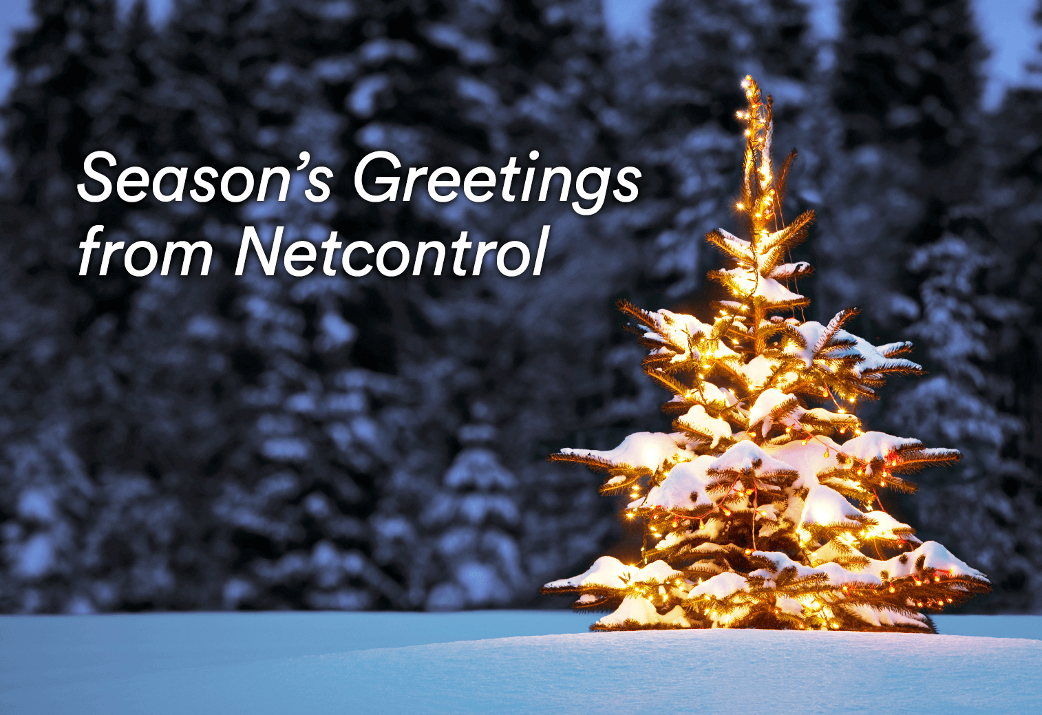 Seasons-Greetings-from-Netcontrol